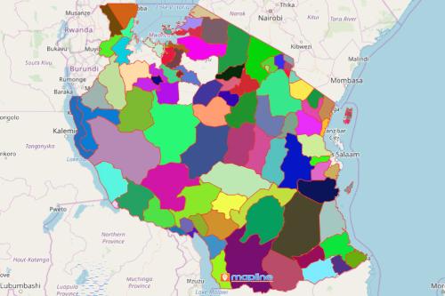 Tanzania District Map